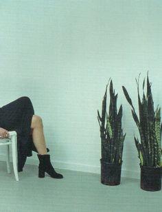 horreure:  by Mark Borthwick for maison martin margiela, A/W 1998