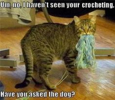 Crochet Cat loves her yarn...