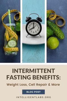 We're constantly told that we need three meals a day and that skipping a meal will utterly screw up our metabolism. It's a staple idea taught for every health class and one of the first things printed on almost every nutrition brochure. The logic behind intermittent fasting goes against that and is based on the concept that the body runs through two different physiological phases.
