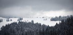 Swiss winter