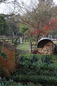 Michael Cooke garden design-rural property in autumn - Modern Garden Design, Australian Native Garden, Cottage Garden, Country Gardening, Gardening Design Diy, Farmhouse Garden, Farm Gardens, Backyard, Australian Garden