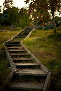 the garden path, one could use old railroad ties :) @Kelly Borchers