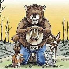 The recent wildfires just breaks my heart in our beloved Smoky Mountains! :(