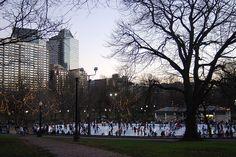 Frog Pond, Boston MA