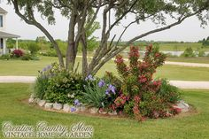 Creative Country Mom's: Country Gardens: Driveway Plantings in Mid-May