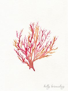 Red Seahorse and No. 3 Sea Coral / Red / Pink / Yellow Ochre / Watercolor / 2 prints. $37.00, via Etsy.