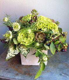 Modern Earthy Floral Design