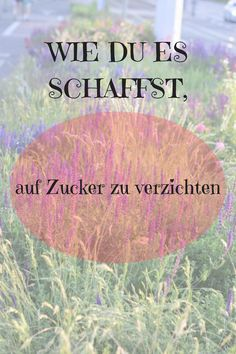 How you can do without sugar and a few words about our comfort zone - Einfach zuckerfrei leben - Detox Sugar Detox Plan, Detox Meal Plan, 21 Day Sugar Detox, Sugar Detox Diet, Sugar Free Diet, Best Body Cleanse, Best Way To Detox, Stop Eating Sugar, Free Diet Plans