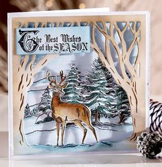 Perfect Partners - Scenic Winter - Crafter's Companion Portfolio