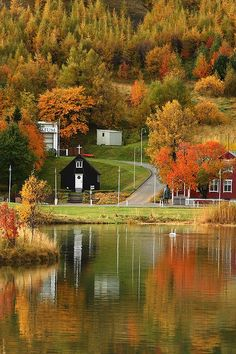 Autumn in Akureyri, Iceland Great time to visit Iceland, so colorful ! www.traveleast.is