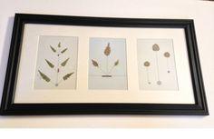 Pressed Botanical Art  Abstract Arrangement by MyStoningtonGarden, $60.00