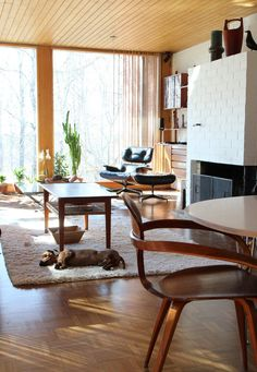 Mid-Century Modern Freak | Pekka & Minna's Residence | Espoo, Finland. Made all the more stylish by the snoozing dachshund!