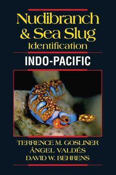 Nudibranch & Sea Slug Identification: Indo-Pacific