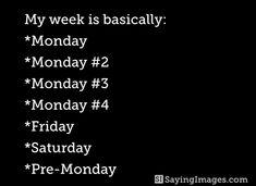#My week