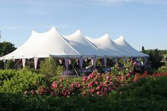 The Century tent's twin pole construction provides maximum stability, even in the heaviest weather.