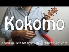 Kokomo - Beach Boys - Ukulele Tutorial How to play Songs Ukulele For Sale, Cool Ukulele, Ukulele Chords Songs, Ukulele Tabs, Kokomo Beach, Beach Music, Guitar Tutorial, Online Lessons, Music Lessons
