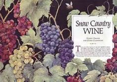 Image Search Results for wine country snow