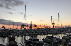 Today's Friday Foto is a Honolulu sunset taken at the harbor during our 2017 trip  http://terryambrose.com/2018/05/honolulu-sunset/