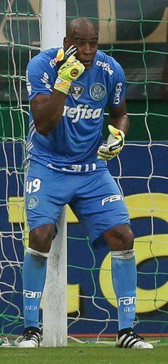 Jailson, Palmeiras. Goleiro do  Palmeiras no Campeonato Brasileiro de 2016.