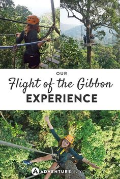 Ziplining Thailand | Looking for fun adventures to take on? Try the Flight of the gibbon experience in Thailand as you zoom past treetops