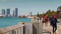 An Interesting Tour of Miami