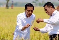 Tunggakan Rekening PDAM Rumah Jokowi Sebesar 7,5 juta