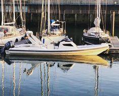 at the Port of Zeebruges