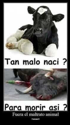 No al maltrato animal..