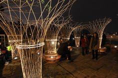 Lightscape Pavilion, miso soup design