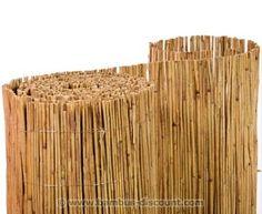 100 x 600cm Hochwertige Schilfrohrmatten günstig hier kaufen bei AST Bambus-Discount