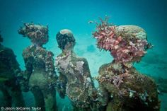 The underwater sculptures of Jason deCaires Taylor. Magical and perfect.
