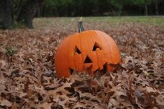 Happy Halloween to all! Halloween/Autumn is my favorite time of year and this is the place where I show my love for it. Make sure you check out the The Pumpkin Patch Network Halloween Horror, Halloween 2018, Halloween Town, Spirit Halloween, Vintage Halloween, Happy Halloween, Halloween Ideas, Haunted Halloween, Halloween Goodies
