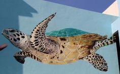 http://buenosairesstreetart.com/wp-content/uploads/2015/03/turtle-mural-conservation-penang-malaysia-wall-art-painting-mural-buenosairesstreetart.com_.jpg