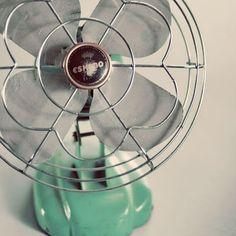 Little green fan.