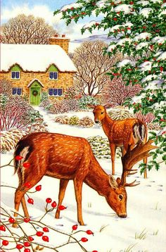 Sarah Adams art Hirsch Illustration, Deer Illustration, Christmas Illustration, Vintage Christmas Images, Christmas Pictures, Santa And His Reindeer, Deer Art, Christmas Deer, Pictures To Paint