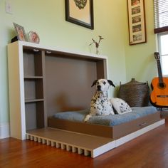 Pet Murphy Bed Open - great idea to have the dog bed that easily goes away!!!