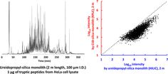 Hydrophilic Interaction Chromatography Using a Meter-Scale Monolithic Silica Capillary Column for Proteomics LC-MS