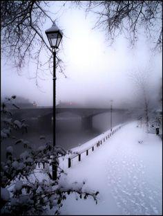 Amazing Paris