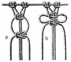 FIG. 534. LOOPED PICOT.