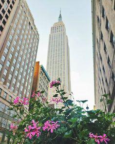 Cómo visitar los famosos outlets de Nueva York Times Square, San Francisco, Empire State Building, New York City, Outdoor Structures, Instagram, Travel, New York Trip, Travel Items