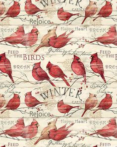 Cardinal Winter - Birds in the Cold - Ivory