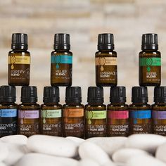 To say that our Tahitian Noni Essential Oils have been a big hit with people would be an understatement. With 12 unique blends to choose from - all of which contain noni seed oil, something found in no other essential oils - what& not to love? Tahitian Noni, Noni Juice, Natural Supplements, Nutritional Supplements, Seed Oil, Tea Tree, Wine Rack, Anti Aging, Herbalism