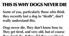 If you've ever lost a furry family member, you will never forget this powerful story. This is why dogs never die. Source: Reddit (self.baww) medianet_width='600'; medianet_height= '250'; medianet_crid='492590824';