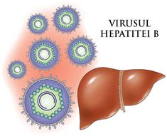 Planet Ayurveda offers effective herbal remedies for Hepatitis B. These herbal remedies works in a natural way in the treatment of Hepatitis B. Ayurvedic Remedies, Natural Treatments, Cloud Server, Hepatitis B, Liver Cancer, Ayurveda, Herbalism, The Cure, Acupuncture