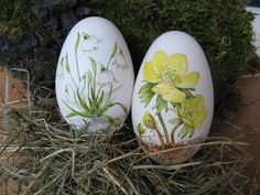 Easter eggs - 2 goose eggs handpainted - a unique product by machlach on DaWand . Easter Egg Crafts, Easter Eggs, Decoupage, Egg Shell Art, Easter Egg Designs, Diy Ostern, Easter Season, Egg Art, China Painting