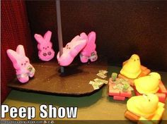peep show.lol madrexfive peep show.lol peep show. Easter Jokes, Easter Peeps, Easter Candy, Easter Stuff, Easter Treats, Easter Cartoons, Easter Food, Easter Dinner, Easter Decor