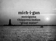The Great Lakes State - Michigan! Michigan Travel, State Of Michigan, Detroit Michigan, Northern Michigan, Lake Michigan, The Mitten State, Upper Peninsula, Great Lakes