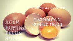 READY STOK!!! WA +62 822.1919.9897, Jual Kuning Telur Asli Jakarta SelatanPutih Telur Untuk Kebutuhan Anda, Bisa COD, Ambil Di tempat, atau Kirim Via Kurir Ojek Online, Ready Stok, Untuk Informasi lebih Lanjut Silahkan Hubungi Kami di+62 813.8008.5544 | Khaya. Atau Bisa Langsung Ke Alamat Kami Di Jalan Jaya Kusuma 1 No 06, RT 07/RW 01, Kp Makasar, Jakarta Timur 13570, Jakarta. Distributor Kuning Telur Higienis Jakarta Utara, Distributor Kuning Telur Segar Jakarta Utara,