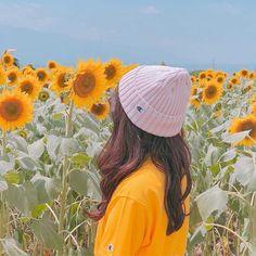 Lovin' the vibe🌻 Korean Girl Photo, Cute Korean Girl, Asian Girl, Girl Photo Poses, Girl Photography Poses, Uzzlang Girl, Art Girl, Tmblr Girl, Sunflower Wallpaper