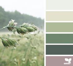 Nature color palette, paint color palettes, kitchen color palettes, green c Kitchen Color Palettes, Paint Color Palettes, Nature Color Palette, Kitchen Colour Schemes, Green Colour Palette, Color Palate, Kitchen Colors, Kitchen Design, Design Seeds